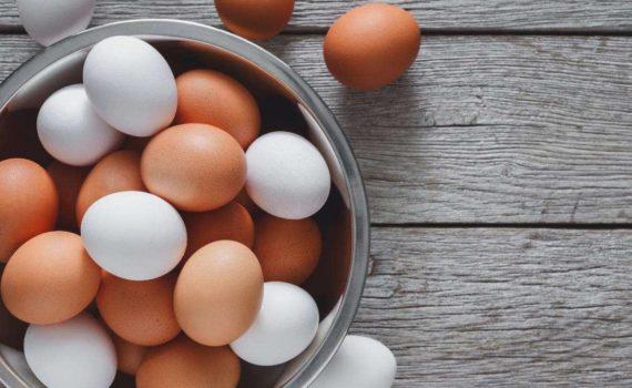 Devriez-vous manger des œufs pour perdre du poids plus rapidement