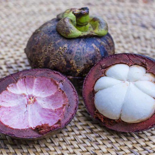 Le garcinia cambogia peut-il aider à perdre du poids
